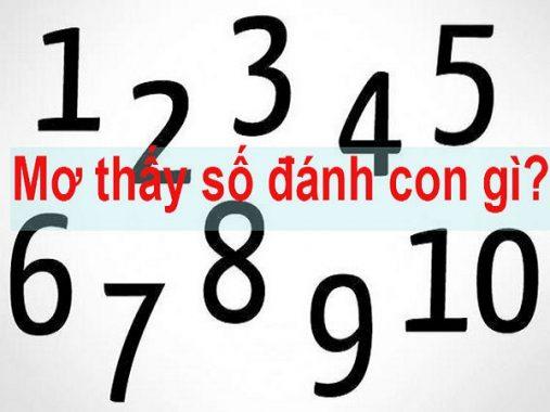 Mơ thấy số đề ý nghĩa gì và nên đánh con số nào