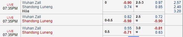 Thông tin tỷ lệ kèoWuhan Zall vs Shandong Luneng