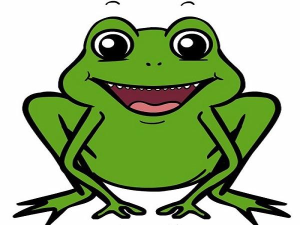 Ngủ mơ thấy con ếch là điềm báo gì, nên đánh số nào?